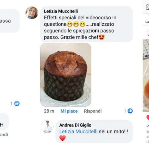 Collage social Letizia