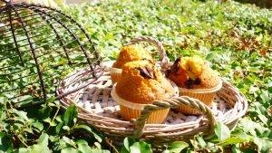 Muffin all'olio extra vergine di oliva