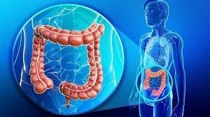 colon irritabile (3)